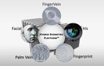 Technologie biométrique d'empreinte digitale, veine de paume -Iris- facial